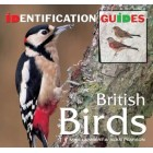 British Birds: Identification Guide (Identification Guides)